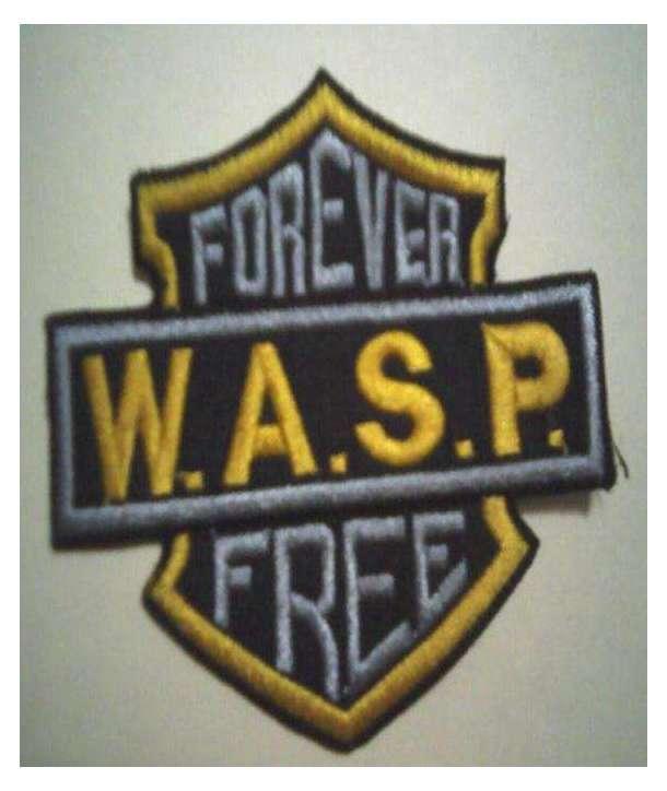 Parche WASP - Logo Bordado