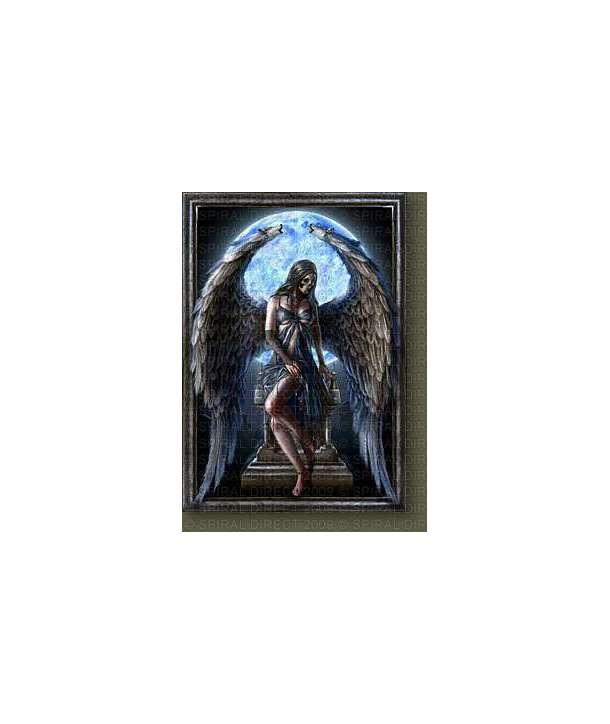 Bandera Spiral - Cursed Angel